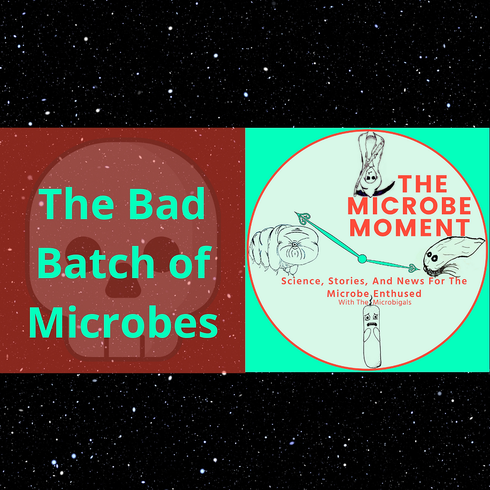 Title Image: The Bad Batch of Microbes and the Microbigals Logo