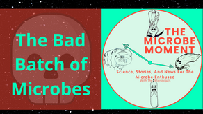 The Bad Batch Of Microbes From Archaea To Bacteriophages