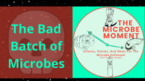 The Bad Batch Of Microbes