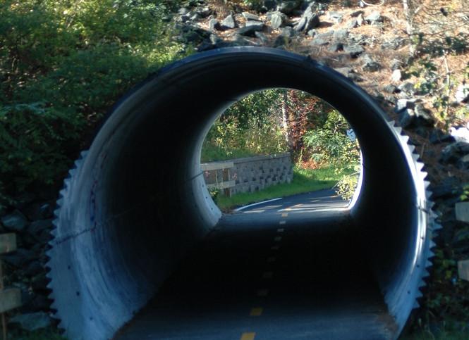 Cape Cod Rail Trail.jpg