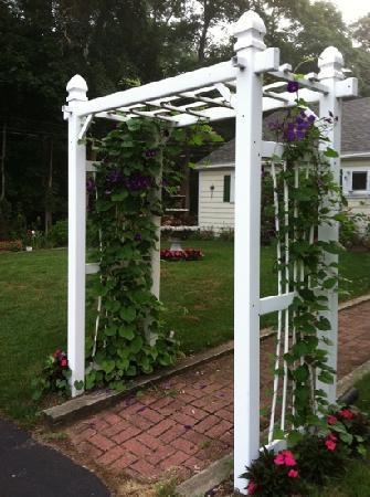 trellis-in-front-of-the.jpg