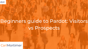 Beginners guide to Pardot: Visitors vs Prospects