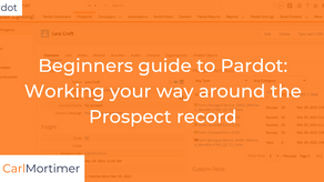 Beginners guide to Pardot: Working your way around the Prospect record