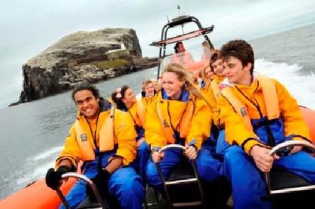 seabird-seafari-boat.jpg