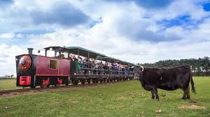 East Links Train.jpg