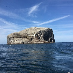 Bass Rock from the sea.jpg
