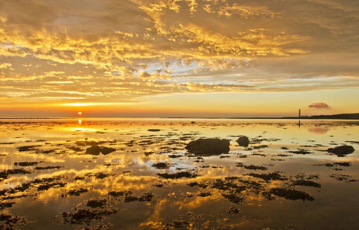 Golden beach.jpg