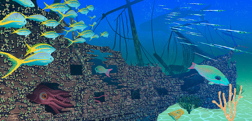 pirate shipspread72.jpg