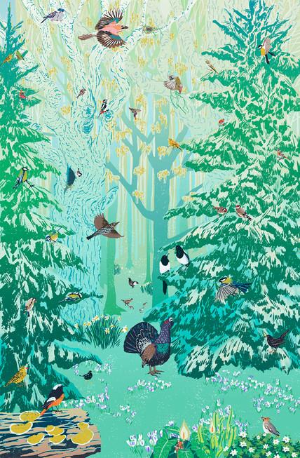 Forest birds.jpg
