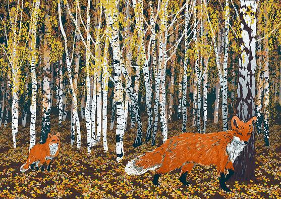 fox72.jpg