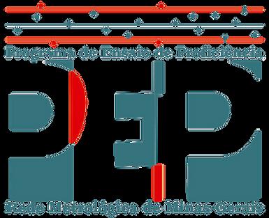PEP - RMMG -logo transparente total.png