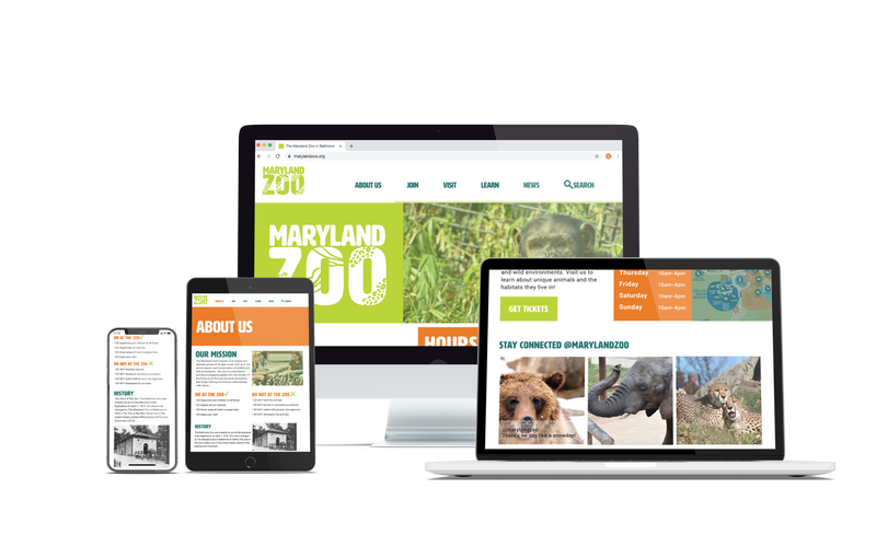 Maryland Zoo Website