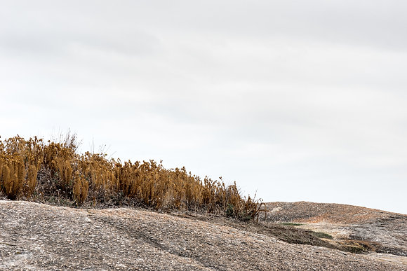 Fine Art print titled Wild. A Greens Pool Denmark, neutral rocky landscape dry mustard coloured grasses and cool grey sky