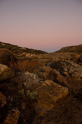 Fine Art Print Dusk. A rich pink sunset sky over neutral warm natural rock garden at The Gap in Albany, has earthy colours.