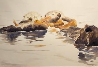 Sleeping in the Kelp