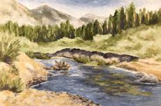 West Carson River