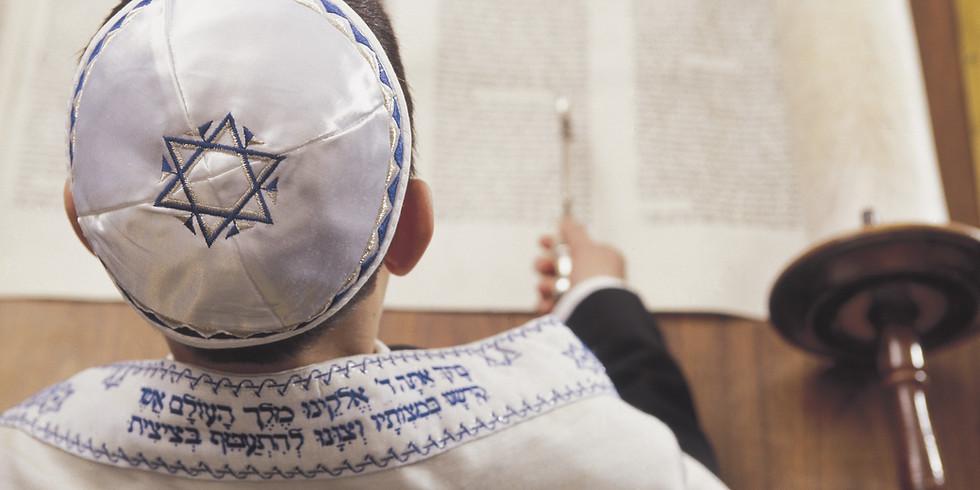 Avremi Shapiro Bar Mitzvah