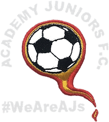 Club Badge - Academu Juniors (White).png