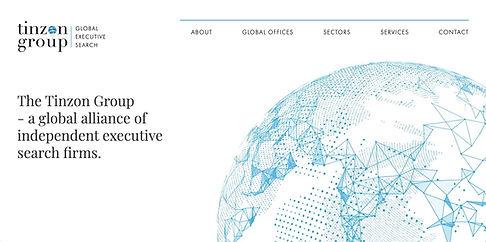 Screenshot - Tinzon website.jpg