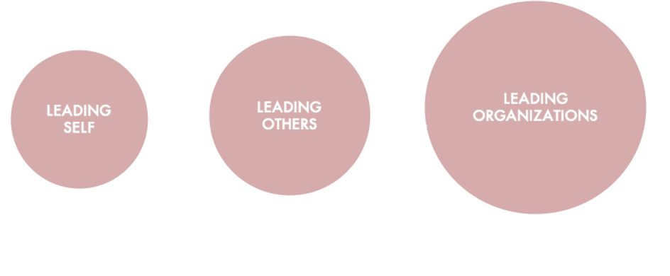 LEADING SELF, OTHER, ORG-UK.png