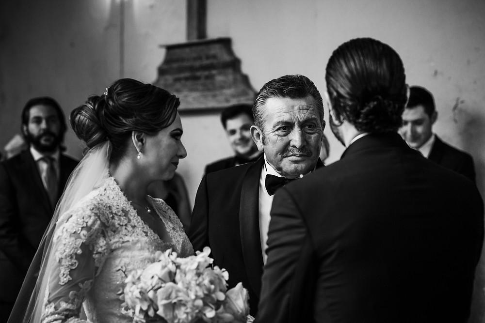 papa novia