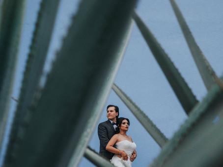 Trash the dress | Orlanda & Michael | Tequila, Jalisco
