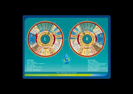 Integrated Iridology® Reverse chart