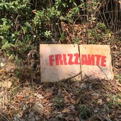 Frizzante 2015