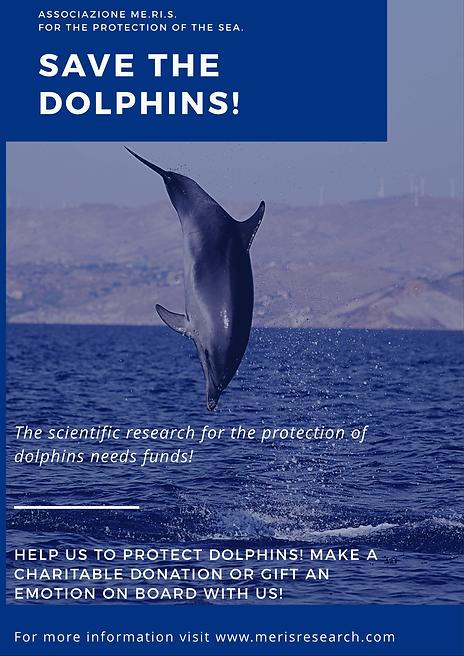 Salva I Delfini(1).PNG