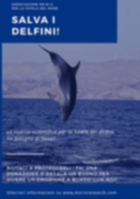 Salva I Delfini.PNG