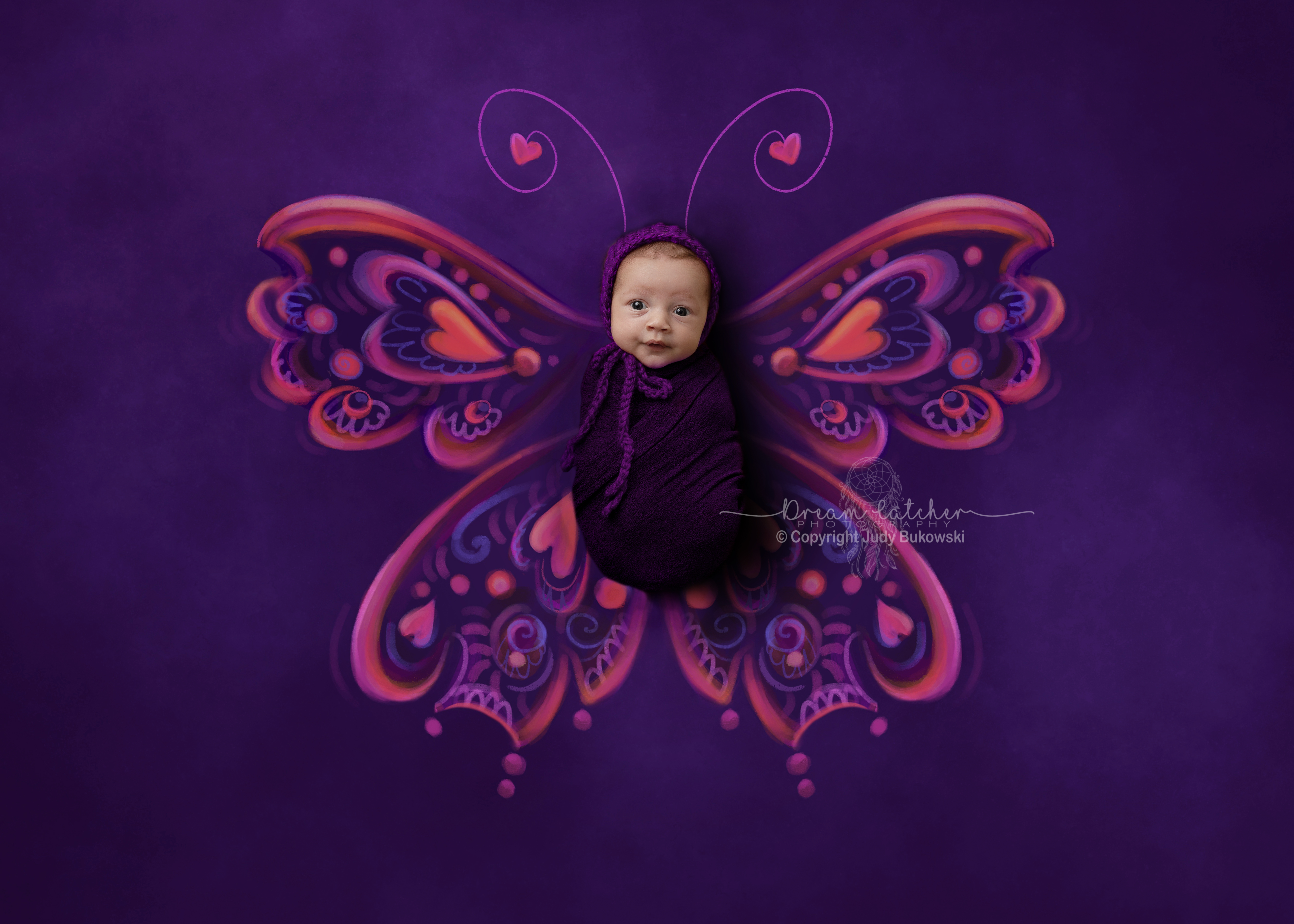 Pinkpurple_Butterfly_-1 fb
