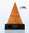 Barracuda Award.png