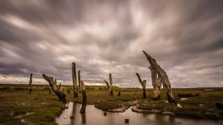 Ancient Jetty, Thornham.jpg