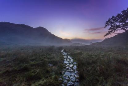 Path to the Pinnacles