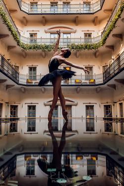 Ellina Pokhodnykh Swan Lake Black Swan Aria Hotel Budapest
