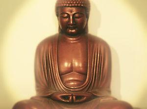 Tram Anh Dam, Acupuncteure, acutram.com, acupuncture yi king