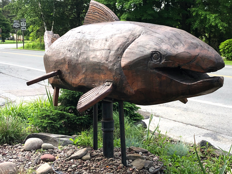 Trout fishing in the Catskills - part II