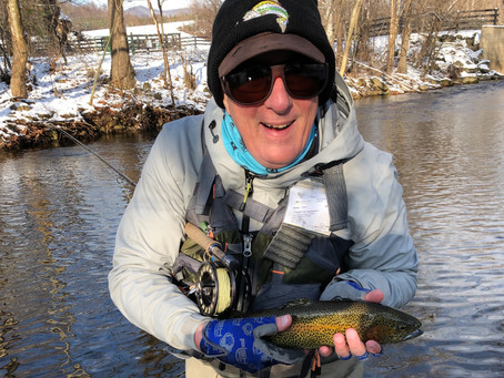 'Shaking a stick' in chilly water - part II