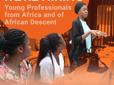 Young Professionals from Africa and of African Descent (YPAAD) Programme