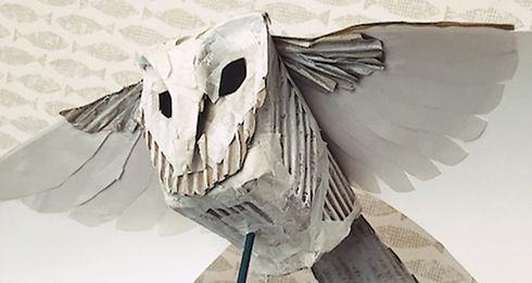 barmpot-theatre-owl-image-credit-ruth-pigott_edited.jpg