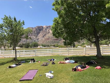 Mindful Meditation & Movement Workshop 2016