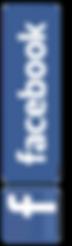 facebook-twitter-instagram-logo-vector-1