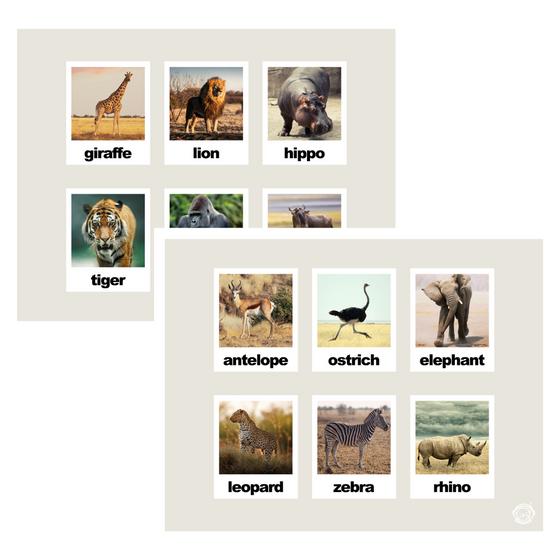 Animal Matching Activity Mat