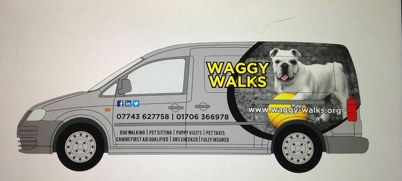 waggy walks heywood dog walker