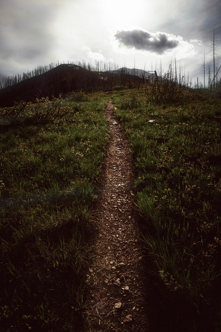 trail_.jpg