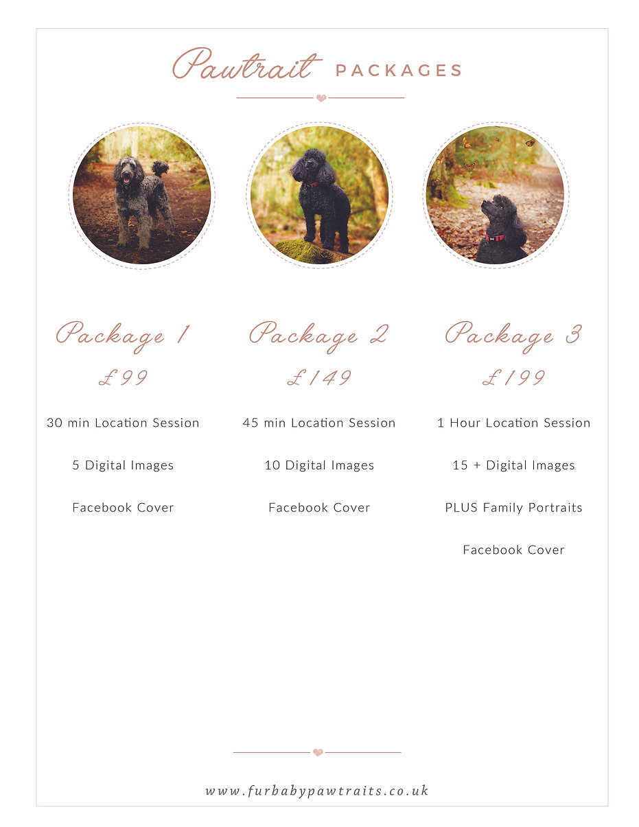 Pawtrait Packages - Outdoor.jpg