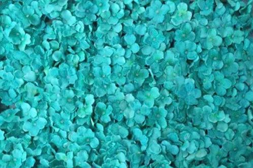 Aqua Blue Flower Wall