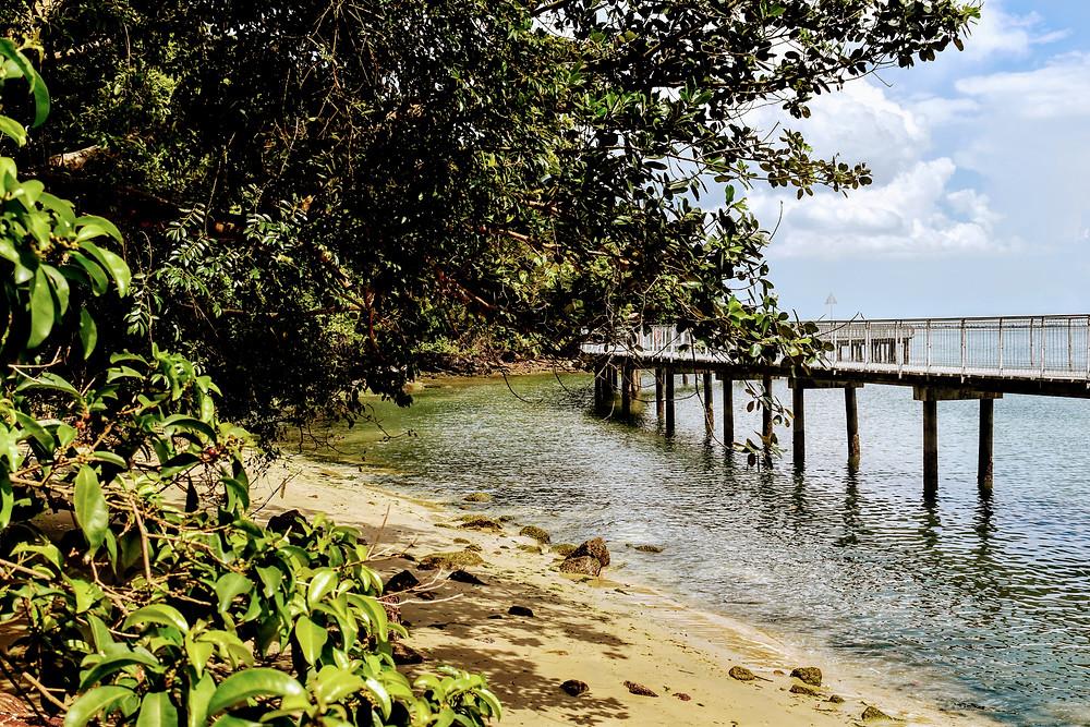 boardwalk over ocean on Pulau Ubin