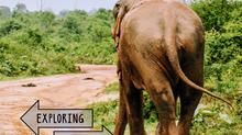 Exploring Beautiful Sri Lanka