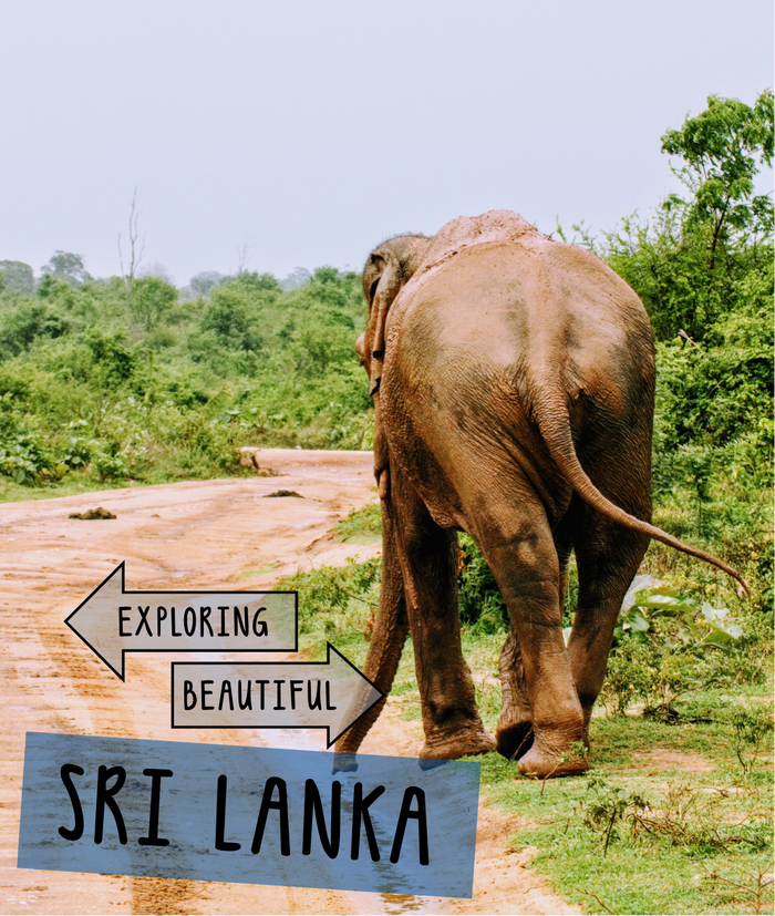 Exploring Beautiful Sri Lanka
